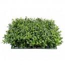Plaque de buis artificiel 25,5x25,5cm 300 feuilles
