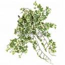 Lierre artificiel 35cm 308 feuilles sur pique