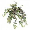 Polyscias artificiel 35cm 308 feuilles sur pique