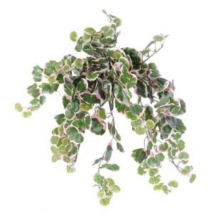 http://www.materiel-mur-vegetal.fr/1022-1942-thickbox/polyscias-artificiel-35cm-308-feuilles-sur-pique.jpg