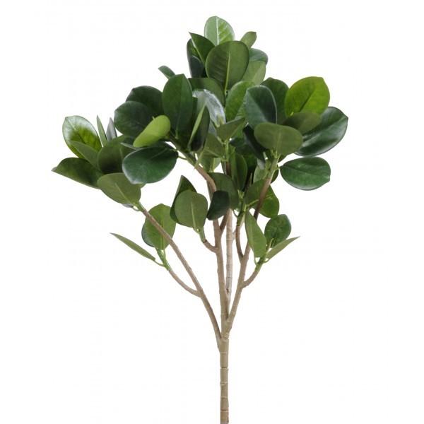 Ficus microcarpa artificiel 40cm sur branche mat riel for Flowall pas cher