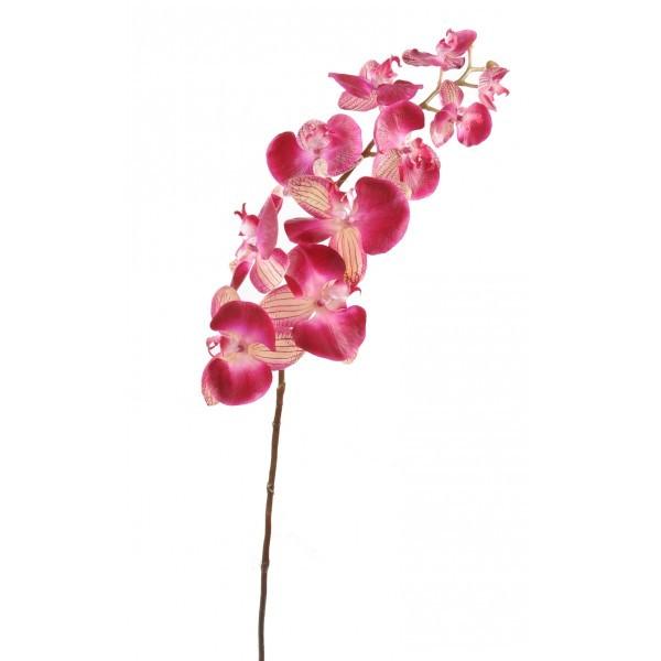 phalaenopsis large artificielle 100cm fleur sur tige. Black Bedroom Furniture Sets. Home Design Ideas