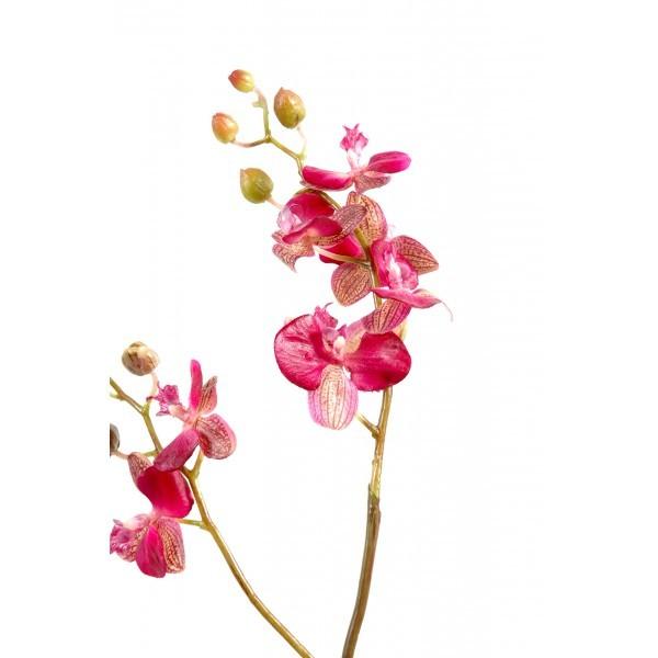 phalaenopsis medium artificielle 70cm fleur sur tige mat riel mur v g. Black Bedroom Furniture Sets. Home Design Ideas