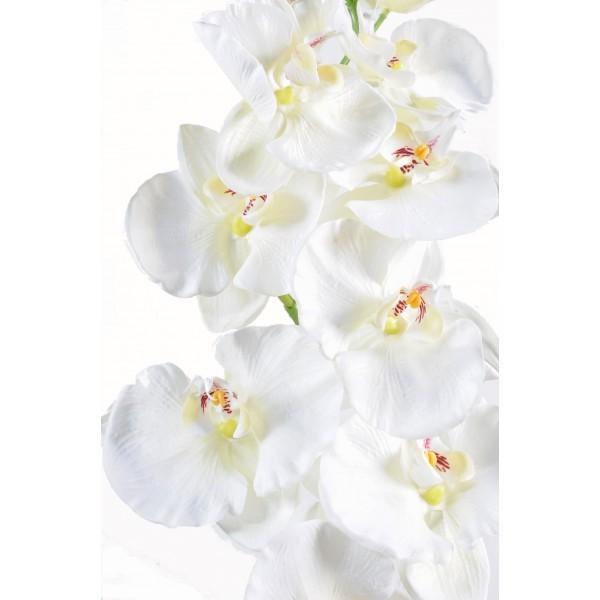 phalaenopsis large artificielle 110cm fleur sur tige mat riel mur v g. Black Bedroom Furniture Sets. Home Design Ideas
