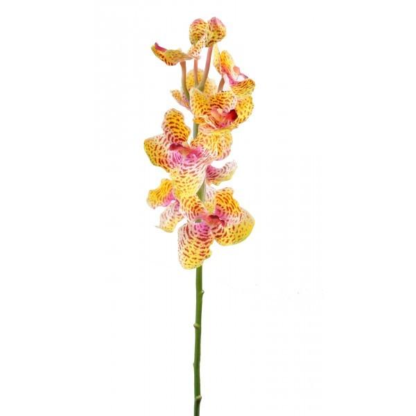 Vanda artificielle 60cm fleur sur tige mat riel mur for Flowall pas cher