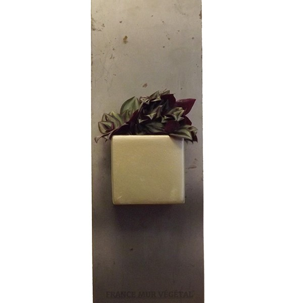 cache pot magn tique carr dor 7x7x6 5cm mat riel mur v g. Black Bedroom Furniture Sets. Home Design Ideas