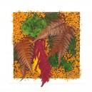 Cadre végétal stabilisé Tablo'Nature 30x30cm Fleurs d'automne