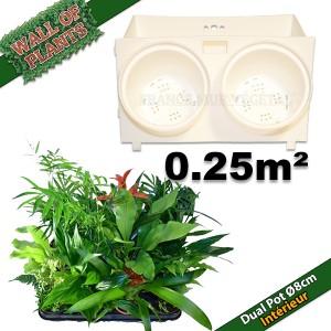 http://www.materiel-mur-vegetal.fr/1172-2294-thickbox/10-modules-dual-pot-o8cm-blanc-20x125cm-avec-20-plantes-dinterieur.jpg