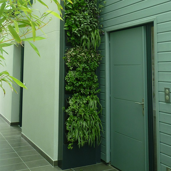 4 kits mur v g tal ext rieur vertiss plus 80x60x20cm avec for Plantes mur vegetal exterieur
