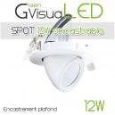 Spot à LEDs 360° 12W encastrable pour mur végétal