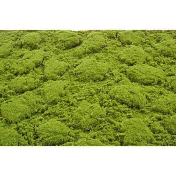 murs végétal artificiel