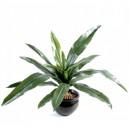 Asplenium artificiel 50cm 18 feuilles sur pique