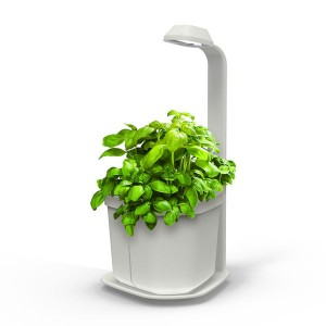 http://www.materiel-mur-vegetal.fr/1300-2642-thickbox/mini-potager-dinterieur-genie-blanc-18x21x44cm.jpg