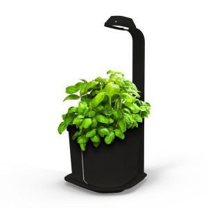 http://www.materiel-mur-vegetal.fr/1301-2645-thickbox/mini-potager-dinterieur-genie-noir-18x21x44cm.jpg