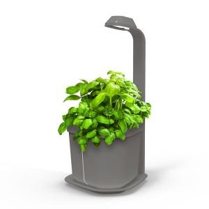 http://www.materiel-mur-vegetal.fr/1302-2649-thickbox/mini-potager-dinterieur-genie-gris-18x21x44cm.jpg