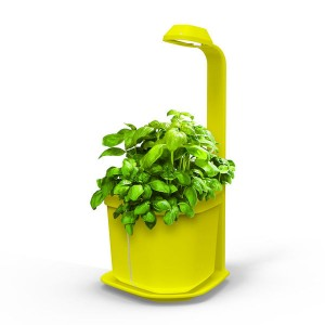 http://www.materiel-mur-vegetal.fr/1305-2658-thickbox/mini-potager-dinterieur-genie-jaune-18x21x44cm.jpg