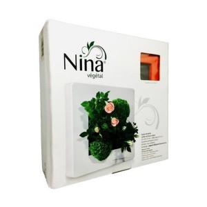 http://www.materiel-mur-vegetal.fr/1309-2668-thickbox/cadre-nina-vegetal-24x24cm-rouge-carmin.jpg
