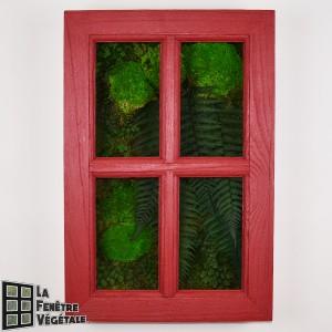 http://www.materiel-mur-vegetal.fr/1327-2733-thickbox/tableau-vegetal-stabilise-fenetre-vegetale-60x40cm-rouge.jpg