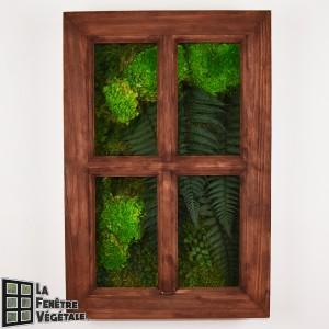 http://www.materiel-mur-vegetal.fr/1329-2739-thickbox/tableau-vegetal-stabilise-fenetre-vegetale-60x40cm-teck.jpg