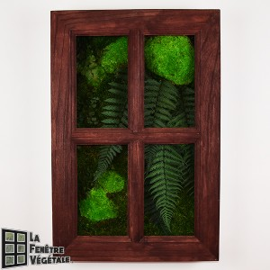 http://www.materiel-mur-vegetal.fr/1331-2745-thickbox/tableau-vegetal-stabilise-fenetre-vegetale-60x40cm-acajou.jpg
