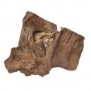Morceau de bois flotté naturel Teck (Modèle-B)