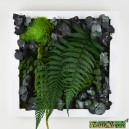 Tableau végétal stabilisé Tablo'Nature 25x25cm Green Eucalyptus