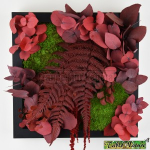 http://www.materiel-mur-vegetal.fr/1348-2799-thickbox/tableau-vegetal-stabilise-tablonature-25x25cm-red-eucalyptus.jpg