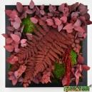 Tableau végétal stabilisé Tablo'Nature 30x30cm Red Eucalyptus