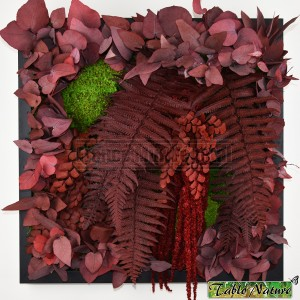 http://www.materiel-mur-vegetal.fr/1350-2805-thickbox/tableau-vegetal-stabilise-tablonature-40x40cm-red-eucalyptus.jpg