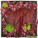 Tableau végétal stabilisé Tablo'Nature 60x60cm Red Eucalyptus