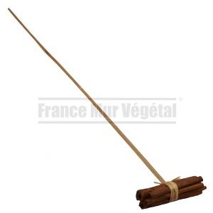 http://www.materiel-mur-vegetal.fr/1355-2830-thickbox/cannelle-sur-tige-en-bois-50cm.jpg