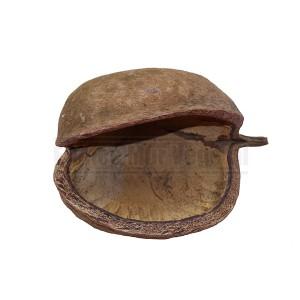 http://www.materiel-mur-vegetal.fr/1359-2841-thickbox/noix-de-bouddha-12-14cm.jpg