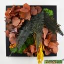 Tableau végétal stabilisé Tablo'Nature 25x25cm Orange Eucalyptus