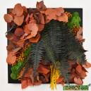 Tableau végétal stabilisé Tablo'Nature 30x30cm Orange Eucalyptus