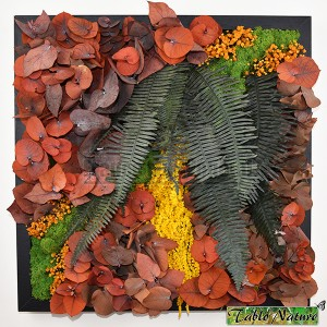 http://www.materiel-mur-vegetal.fr/1363-2853-thickbox/tableau-vegetal-stabilise-tablonature-40x40cm-orange-eucalyptus.jpg
