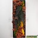 Tableau végétal stabilisé Tablo'Nature 60x20cm Orange Eucalyptus