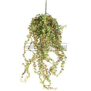 http://www.materiel-mur-vegetal.fr/1384-2971-thickbox/callissia-mini-artificiel-55cm-sur-pique.jpg