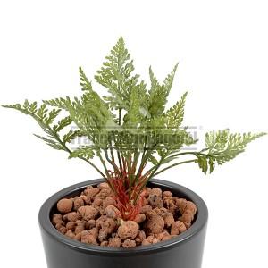 http://www.materiel-mur-vegetal.fr/1396-3002-thickbox/fougere-artificielle-mini-12cm-sur-pique.jpg
