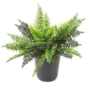 http://www.materiel-mur-vegetal.fr/1398-3005-thickbox/fougere-artificielle-40cm-sur-pique.jpg