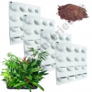4 Kits Mur Végétal Flowall Blanc 42x40cm avec plantes