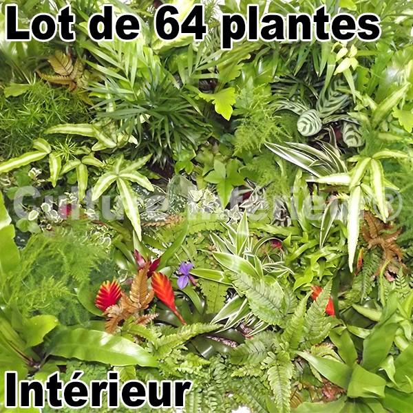 4 kits mur v g tal flowall blanc 42x40cm avec plantes for Flowall pas cher