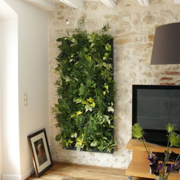 decoration mur vegetal interieur