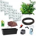 4 Kits Mur Végétal Flowall Blanc avec plantes & arrosage automatique