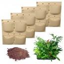 4 Kits Mur Végétal Extérieur Flowall Blanc 42x40cm avec 40 plantes