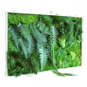 http://www.materiel-mur-vegetal.fr/383-749-thickbox/tableau-vegetal-stabilise-picagreen-maxi-horizontal-114x64cm.jpg