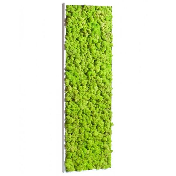 tableau v g tal stabilis lichen vert citron demi maxi 114x36cm mat riel mur v g. Black Bedroom Furniture Sets. Home Design Ideas