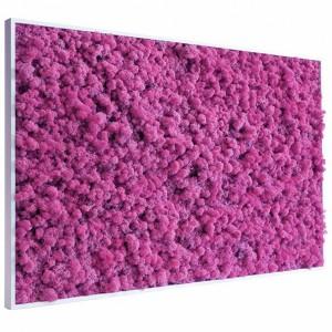 http://www.materiel-mur-vegetal.fr/411-788-thickbox/tableau-vegetal-stabilise-lichen-rose-maxi-114x64cm.jpg