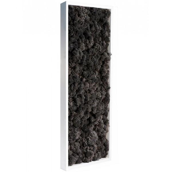 tableau v g tal stabilis lichen noir slim 60x18cm mat riel mur v g. Black Bedroom Furniture Sets. Home Design Ideas