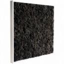 Tableau végétal stabilisé Lichen Noir 60x60cm