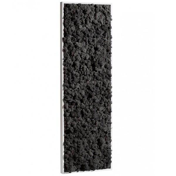 Tableau v g tal stabilis lichen noir demi maxi 114x36cm for Mur vegetal interieur pas cher
